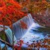 紅葉のダム
