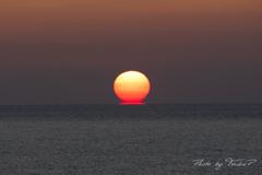 蕩ける太陽