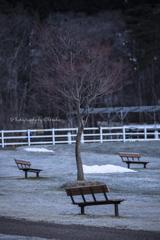 新・誰も座らないベンチ...Ⅴ