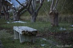 新・誰も座らないベンチ...Ⅱ