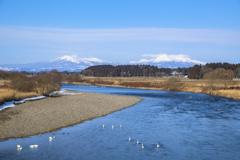 山と川と白鳥と