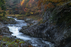 大人の渓流