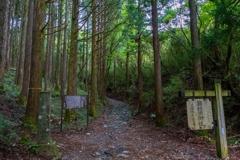 箱根(2)