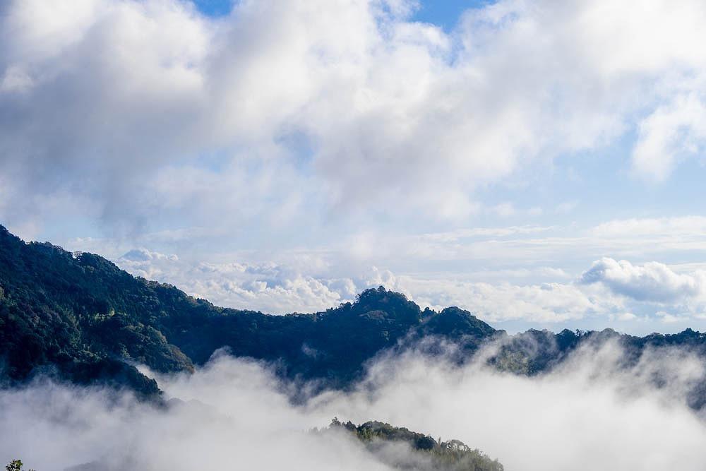 焼津の雲海(2)