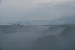 星峠の雲海