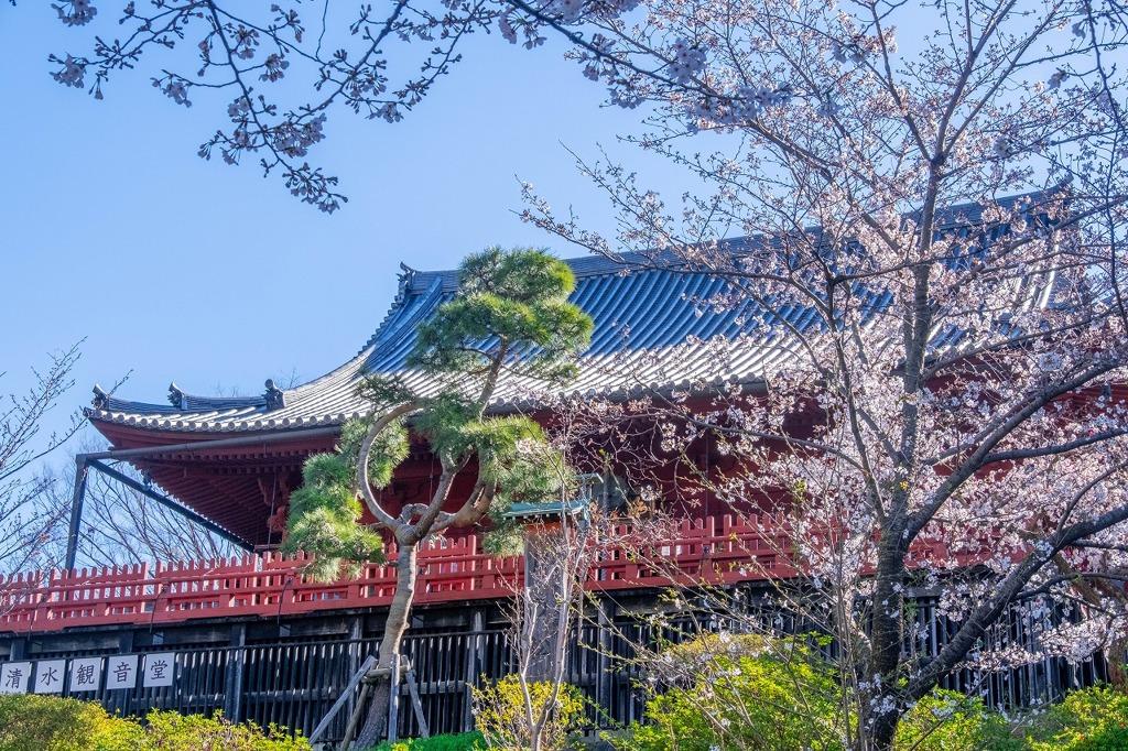 2020年東京の春(1)