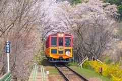 トロッコ列車の旅(7)