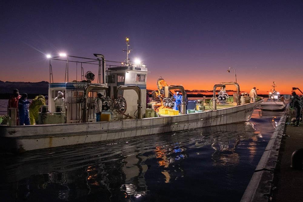 焼津港の夜明け(19)