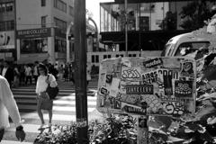 原宿横断歩道