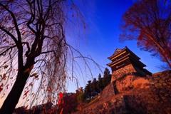 秋に暮れる真田の城