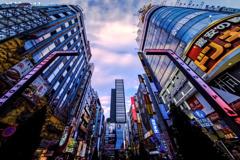 ザ・歌舞伎町!