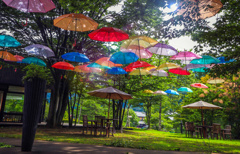 梅雨空のパラソル