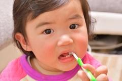 碧依1歳 歯は6本