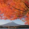 秋の朝日に照る山紅葉