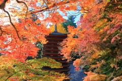秋盛り~談山神社~