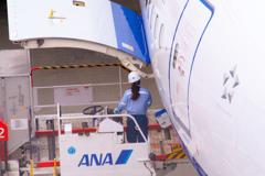 空港で働く女性シリーズ
