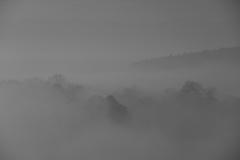霧に包まれた里山