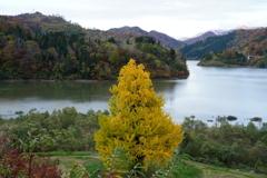 横川ダム湖にて2