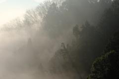 霧の朝 その3