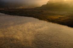朝日差す冬の川