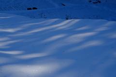 雪のあぜ道