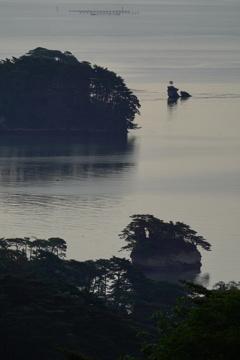 朝の松島湾8