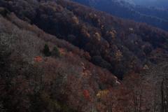 初冬の高原2