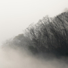 霧に包まれる里山