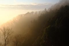 朝日の当たる里山