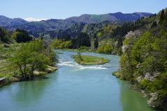 新緑の最上川