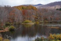 冬を迎える地蔵沼2