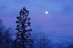 早朝、西の空2