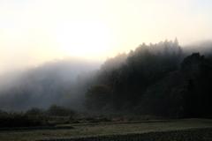 山里の目覚め