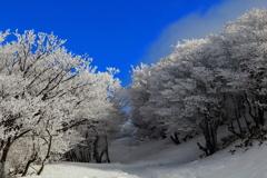 樹氷のアーチ