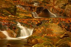 落ち葉と斜滝