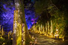 赤目四十八滝・幽玄の竹灯