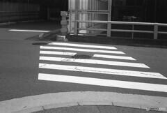 横断歩道の先は?