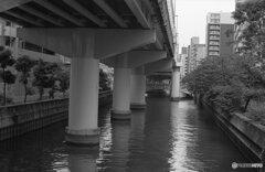 九之助橋から東横堀川