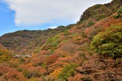 めがね橋が見る秋の眺め