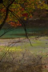 色づく湖沼と葉