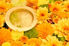 花の創作24