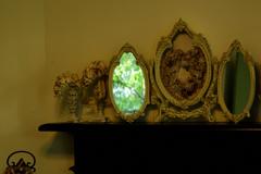 鏡の中の森