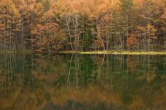 浮き島の秋景