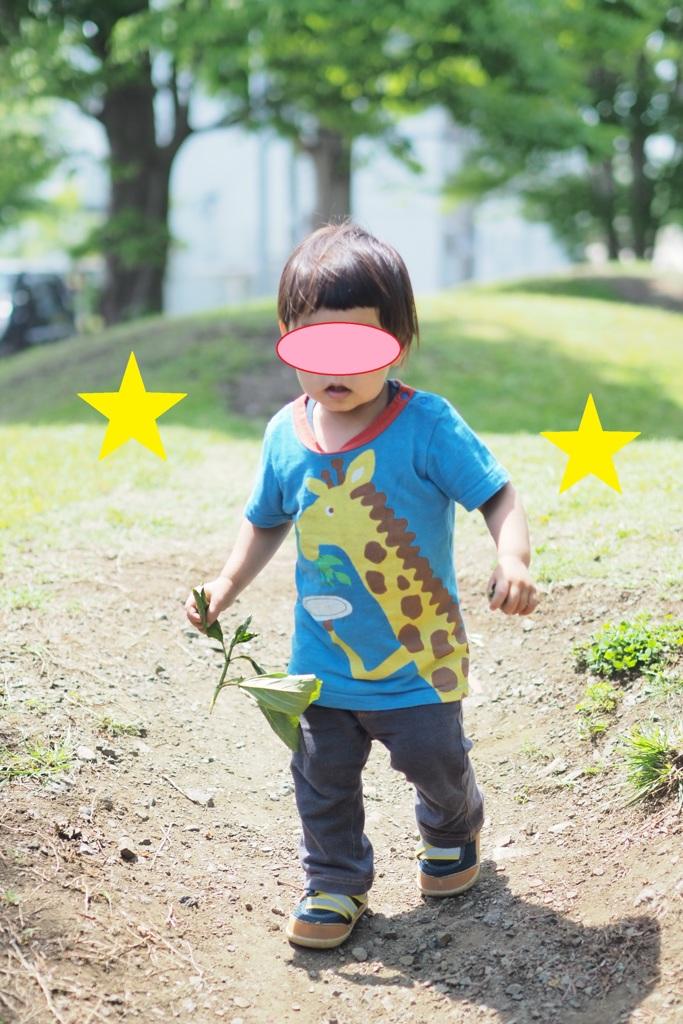 葉っぱを持って歩く1歳児