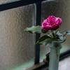 a bud vase