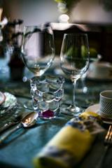 lavish dinner