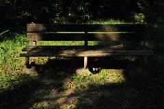 座りたくないベンチ