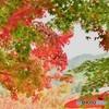 京都永観堂の秋