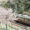春の阪急電車その2