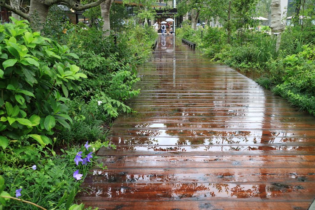 水面で飾る遊歩道